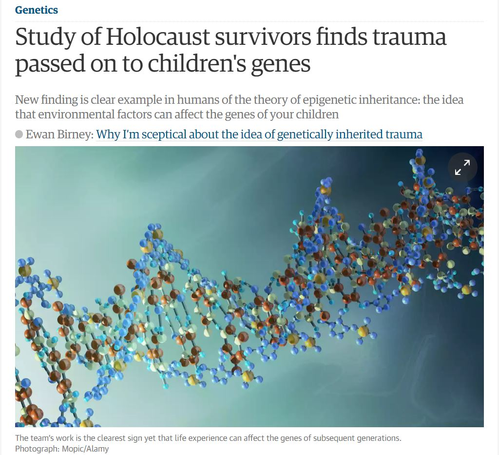 study of holocaust survivors essay Free essay: in the aftermath of the jewish holocaust, an outpouring of eyewitness accounts by both survivors and perpetrators has surfaced as historical.